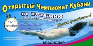 Kuban_2013 банер